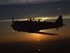 Aviation T-6 Texan