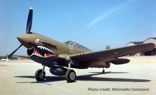 Curtis P-40 Warhawk: Warrior to the end
