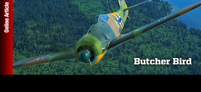 Tale of the FW 190