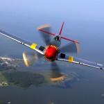 P-51_Mustang202