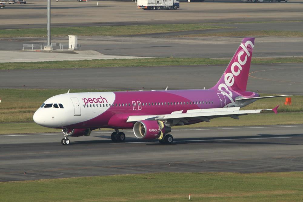 Low-Cost Flying Arrives in Luxury-Loving Japan
