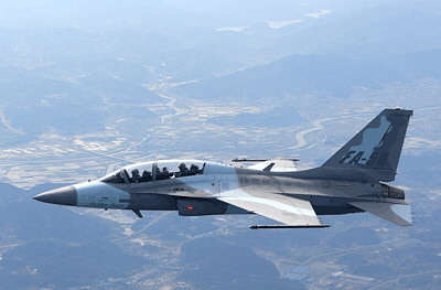 ROK to Get First South Korean Fighter