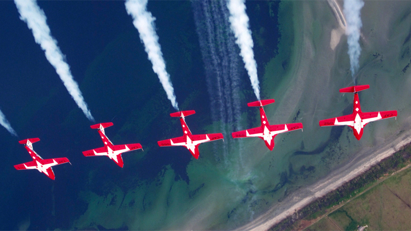 Snowbirds Still Flying Despite Trainer Woes