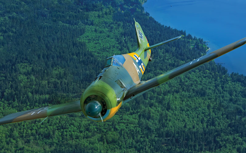 Butcher Bird – Fw 190