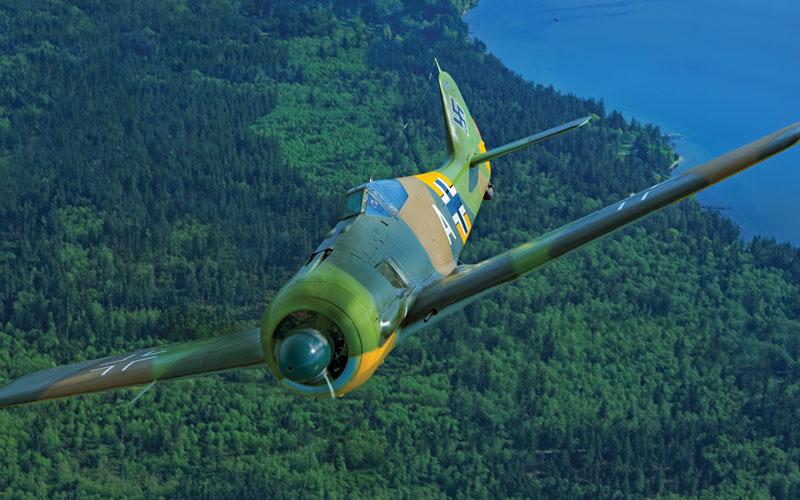 Butcher Bird – Fw 190