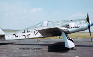 "Focke-Wulf FW-190D: The Luftwaffe's Long Nosed ""Butcher Bird"""