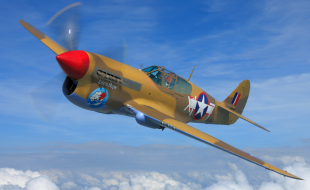 Friday Fighter, P-40 Warhawk