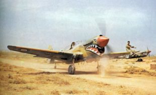 P-40 – By any other Name